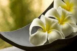 1 Notte SPA+AMORE+RELAX in Junior SUITE a Padova pensione completa + massaggio Thai € 195